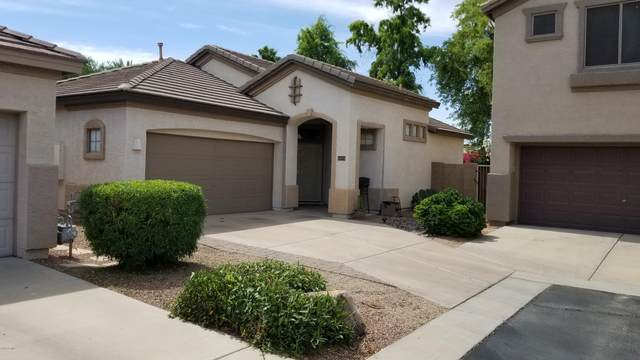 14314 W Lexington Avenue, Goodyear, AZ 85395 (MLS #6079277) :: The Luna Team
