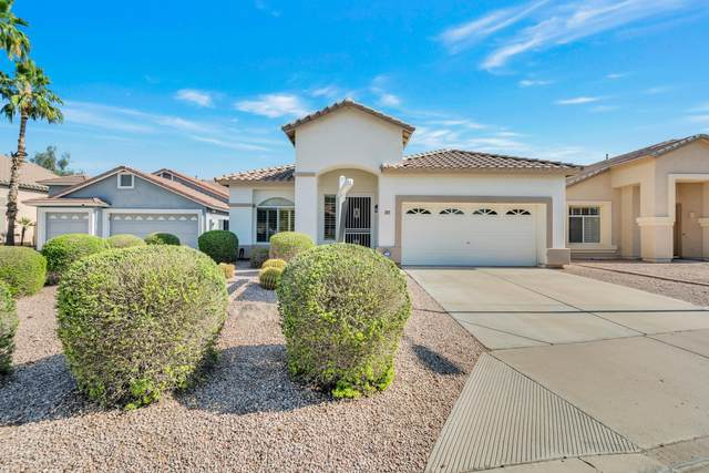 925 W San Marcos Drive, Chandler, AZ 85225 (MLS #6079280) :: Lux Home Group at  Keller Williams Realty Phoenix