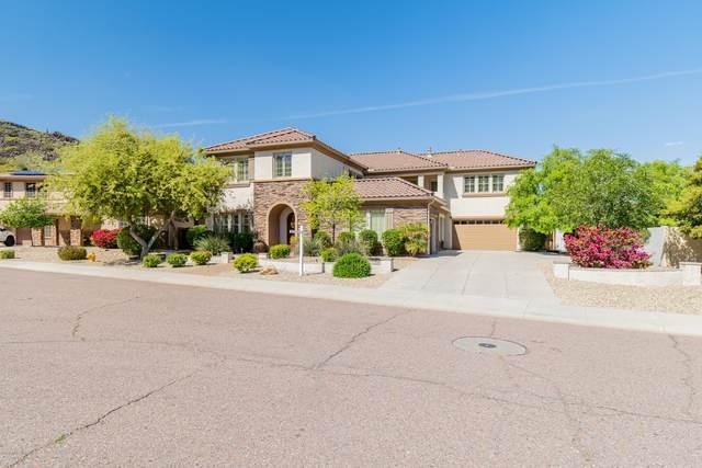 5812 W Spur Drive, Phoenix, AZ 85083 (MLS #6079335) :: Keller Williams Realty Phoenix