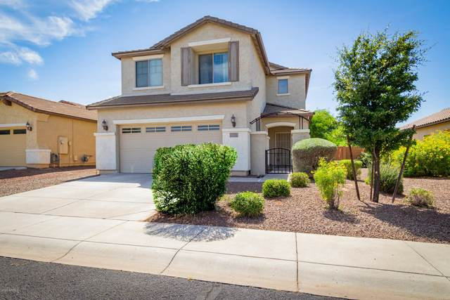 20504 N 261ST Avenue, Buckeye, AZ 85396 (#6079344) :: AZ Power Team | RE/MAX Results