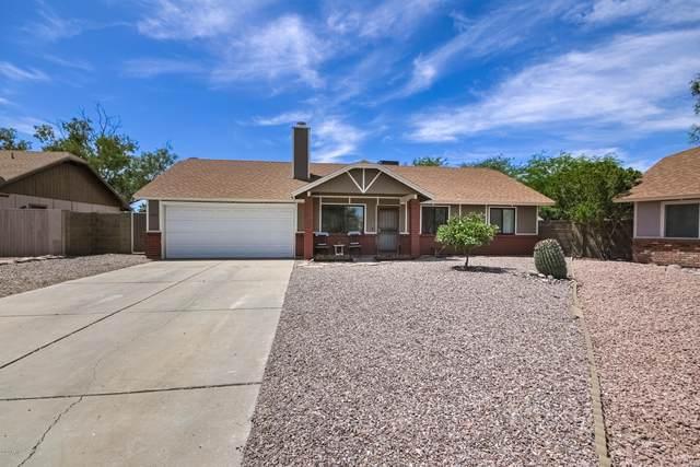 1100 N Evergreen Court, Gilbert, AZ 85233 (MLS #6079374) :: Power Realty Group Model Home Center