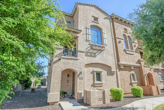 900 S 94TH Street #1046, Chandler, AZ 85224 (MLS #6079392) :: Klaus Team Real Estate Solutions