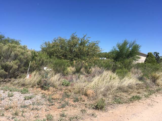 5920 S Wild Rose Road, Hereford, AZ 85615 (MLS #6079396) :: Service First Realty