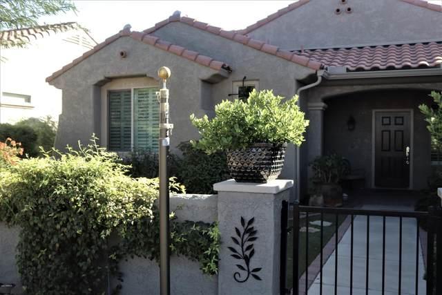 27057 W Tonopah Drive, Buckeye, AZ 85396 (MLS #6079435) :: Long Realty West Valley