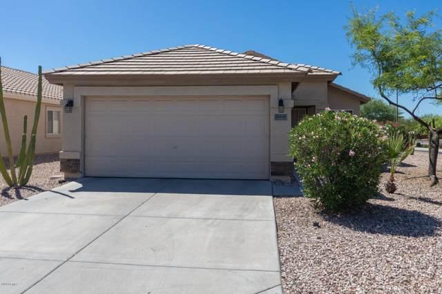 22645 W Tonto Street, Buckeye, AZ 85326 (MLS #6079463) :: Brett Tanner Home Selling Team