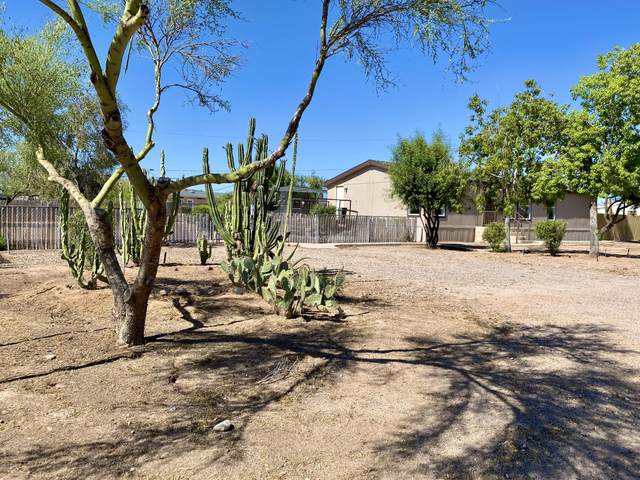 2972 W Mockingbird Street, Apache Junction, AZ 85120 (MLS #6079499) :: My Home Group