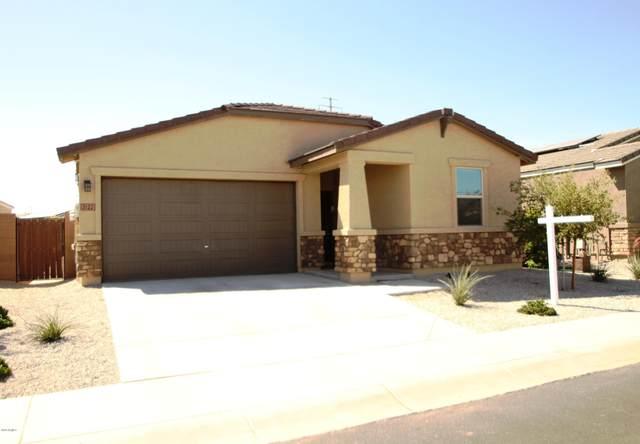 2122 S 238TH Avenue, Buckeye, AZ 85326 (MLS #6079516) :: Brett Tanner Home Selling Team
