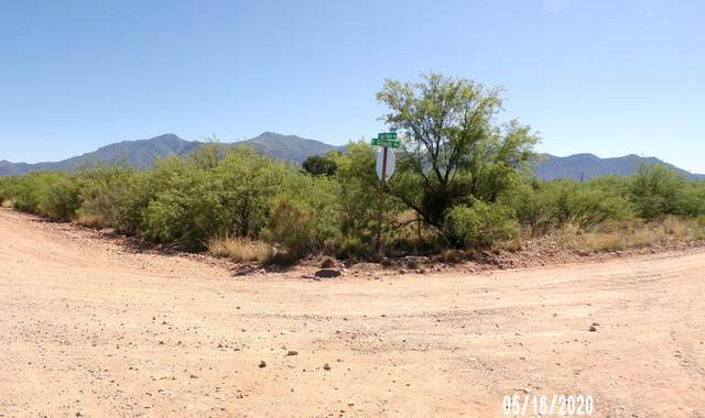 TBD Glisch & San Pedro, Sierra Vista, AZ 85650 (MLS #6079568) :: Midland Real Estate Alliance