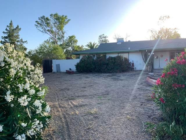 18220 N 74TH Drive, Glendale, AZ 85308 (MLS #6079578) :: My Home Group