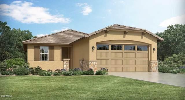 11685 N 187TH Drive, Surprise, AZ 85388 (MLS #6079631) :: The Garcia Group