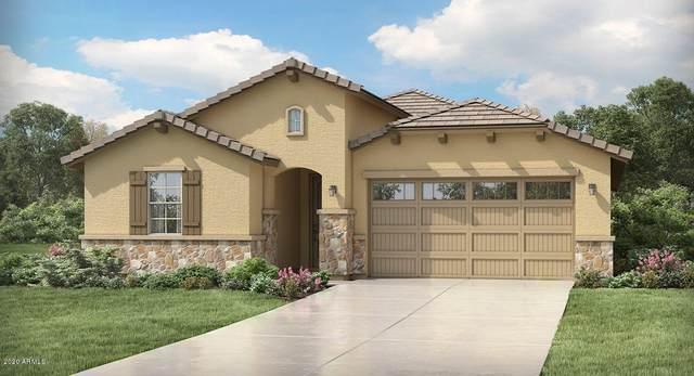 18819 W Cholla Street, Surprise, AZ 85388 (MLS #6079762) :: Devor Real Estate Associates
