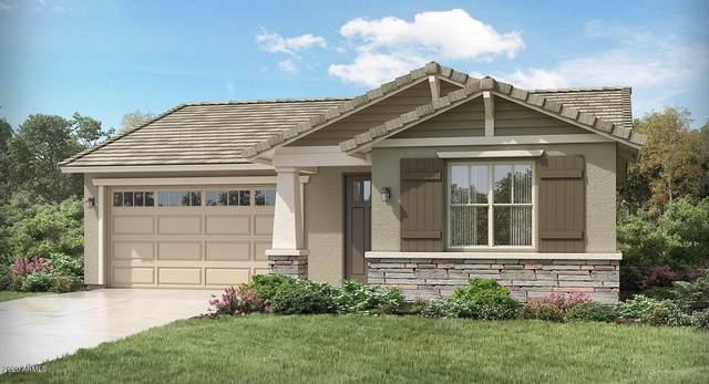 18867 W Cholla Street, Surprise, AZ 85388 (MLS #6079781) :: Devor Real Estate Associates