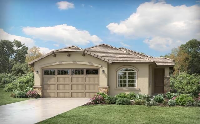 11781 N 187TH Drive, Surprise, AZ 85388 (MLS #6079797) :: Devor Real Estate Associates