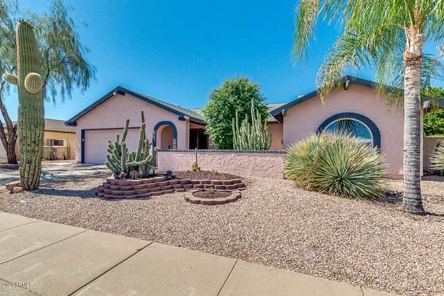 5602 W Lupine Avenue, Glendale, AZ 85304 (MLS #6079812) :: Balboa Realty