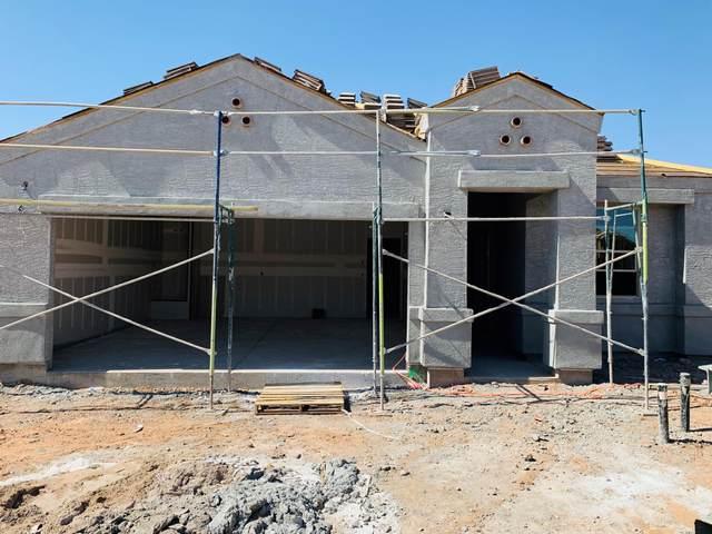 11676 E Sunflower Lane, Florence, AZ 85132 (MLS #6079821) :: neXGen Real Estate