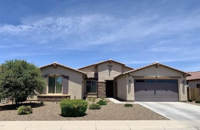 2468 E Anika Drive, Gilbert, AZ 85298 (MLS #6079944) :: The Bill and Cindy Flowers Team