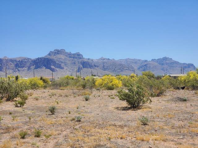 0 E Roosevelt Street, Apache Junction, AZ 85119 (MLS #6079965) :: Klaus Team Real Estate Solutions