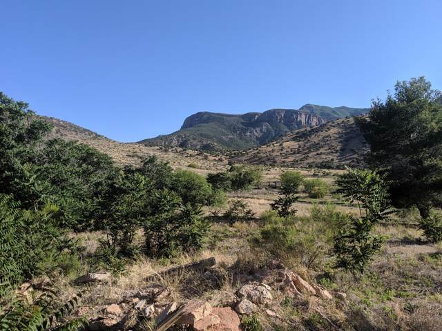 2.6 Acres Richards Road, Hereford, AZ 85615 (MLS #6079982) :: Service First Realty