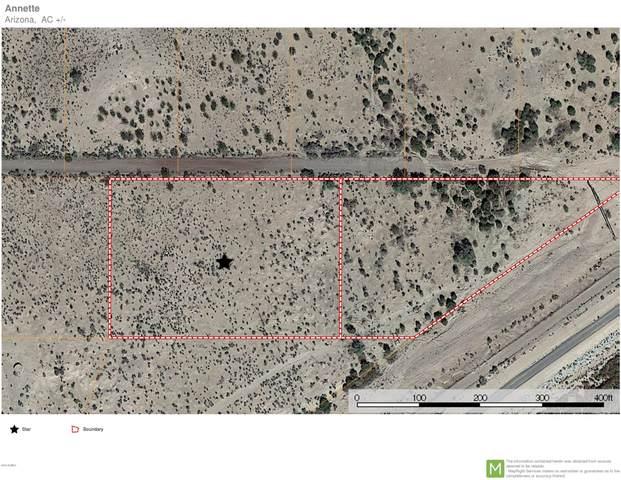 6405 E Reynolds Road, Florence, AZ 85132 (MLS #6080002) :: Arizona Home Group