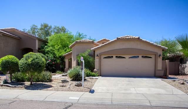 2617 E Beverly Road, Phoenix, AZ 85042 (MLS #6080025) :: Russ Lyon Sotheby's International Realty