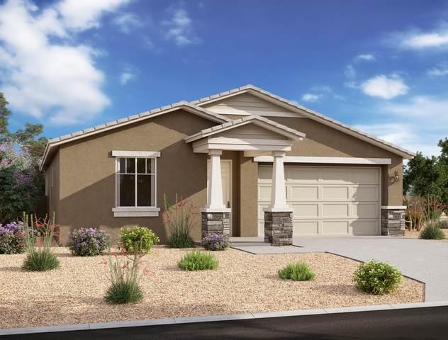 26263 N 133RD Avenue, Peoria, AZ 85383 (MLS #6080125) :: The W Group