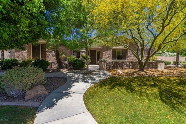 3526 E Menlo Circle, Mesa, AZ 85213 (MLS #6080167) :: Selling AZ Homes Team