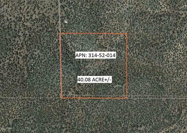 826 Tower Road, Peach Springs, AZ 86434 (MLS #6080242) :: Lucido Agency