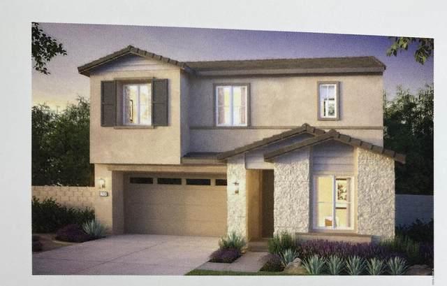 860 W Baylor Lane, Chandler, AZ 85225 (MLS #6080272) :: Klaus Team Real Estate Solutions