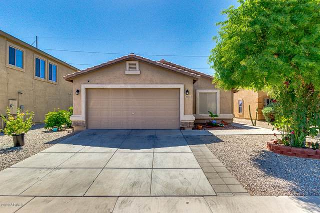 8604 S 254th Drive, Buckeye, AZ 85326 (MLS #6080355) :: Brett Tanner Home Selling Team