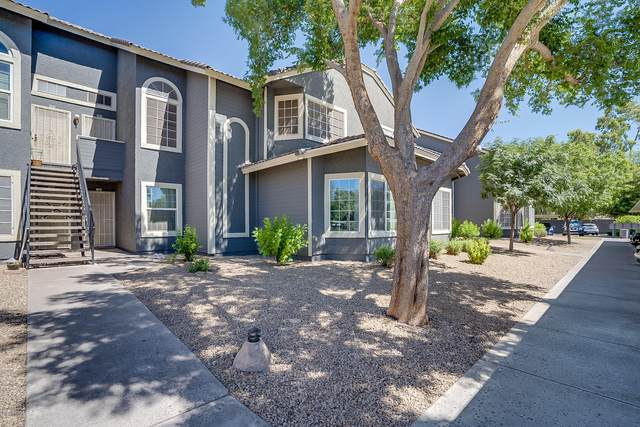 255 S Kyrene Road #104, Chandler, AZ 85226 (MLS #6080385) :: Brett Tanner Home Selling Team