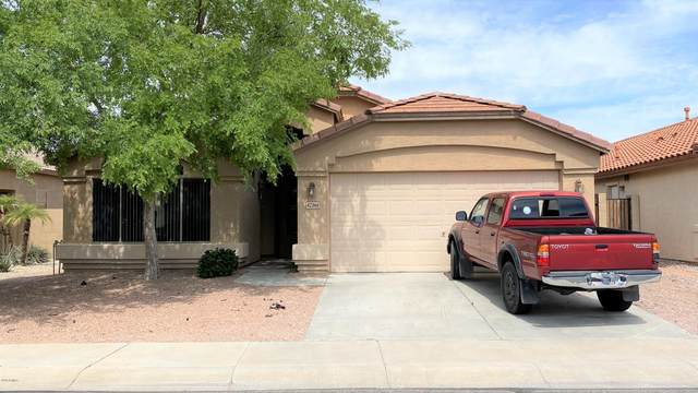 42366 W Chambers Drive, Maricopa, AZ 85138 (MLS #6080403) :: The AZ Performance PLUS+ Team