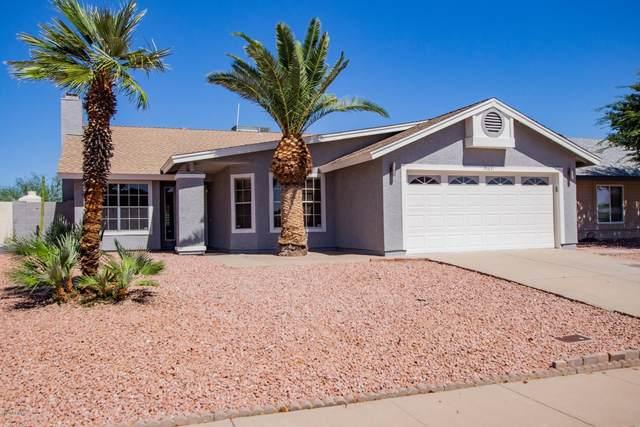 19631 N Central Avenue, Phoenix, AZ 85024 (MLS #6080407) :: ASAP Realty