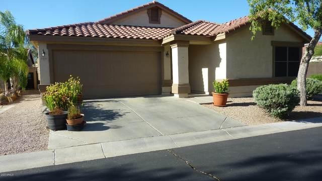 3350 S Chaparral Road, Apache Junction, AZ 85119 (MLS #6080416) :: Brett Tanner Home Selling Team