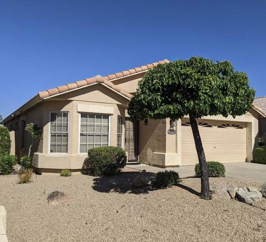 20298 N 51ST Drive, Glendale, AZ 85308 (MLS #6080439) :: Keller Williams Realty Phoenix