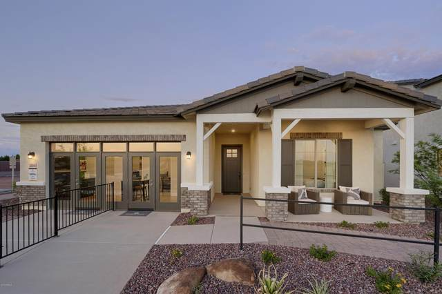 13679 N 145TH Drive, Surprise, AZ 85379 (MLS #6080481) :: Long Realty West Valley