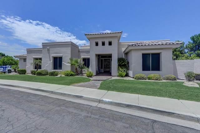 1442 N Cliffside Drive, Gilbert, AZ 85234 (MLS #6080521) :: Relevate | Phoenix