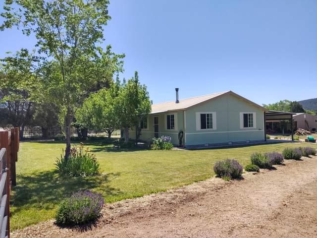 205 E Hazelwood Road, Young, AZ 85554 (MLS #6080525) :: Dijkstra & Co.