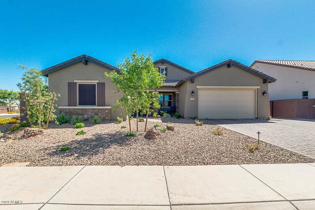 907 W Pagoda Avenue, Queen Creek, AZ 85140 (MLS #6080539) :: The Property Partners at eXp Realty