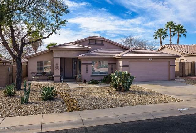 15019 W Gelding Drive, Surprise, AZ 85379 (MLS #6080550) :: Revelation Real Estate