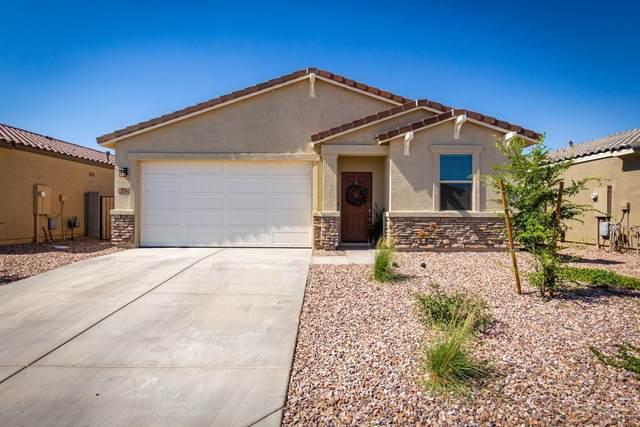 374 W Cholena Trail, Queen Creek, AZ 85140 (MLS #6080579) :: The Laughton Team