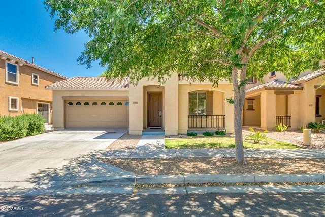 3277 E Carla Vista Drive, Gilbert, AZ 85295 (MLS #6080619) :: Conway Real Estate