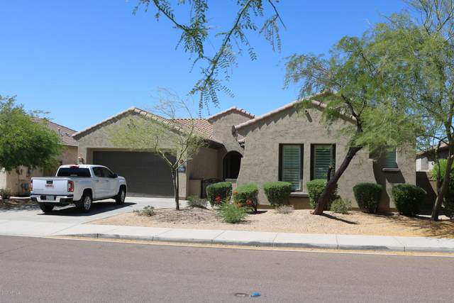 27434 N Higuera Drive, Peoria, AZ 85383 (MLS #6080626) :: The W Group