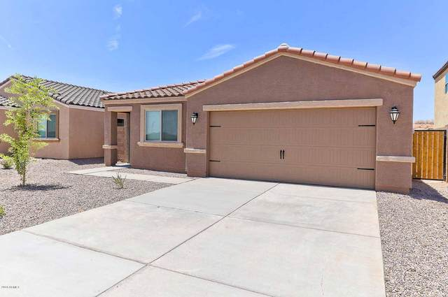 10540 E Wallflower Lane, Florence, AZ 85132 (MLS #6080642) :: Selling AZ Homes Team
