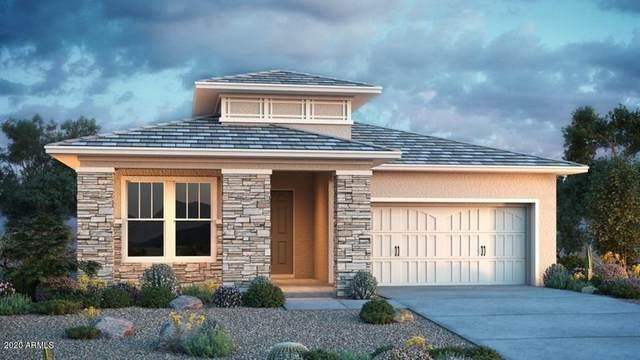 20888 E Reins Road, Queen Creek, AZ 85142 (MLS #6080659) :: Devor Real Estate Associates