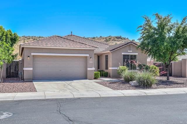 6015 W Charlotte Drive, Glendale, AZ 85310 (MLS #6080665) :: The Daniel Montez Real Estate Group