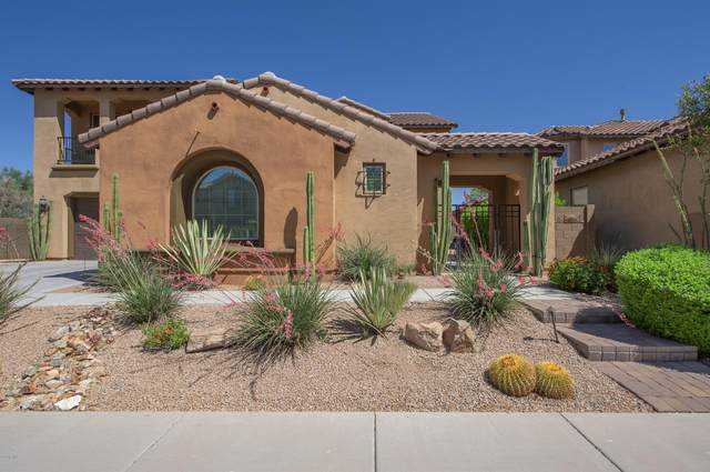 3706 E Cat Balue Drive, Phoenix, AZ 85050 (MLS #6080725) :: Klaus Team Real Estate Solutions