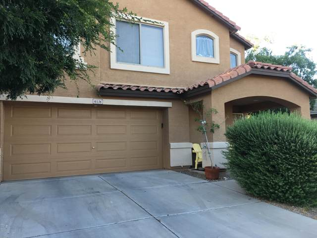 16536 W Ironwood Street, Surprise, AZ 85388 (MLS #6080764) :: Yost Realty Group at RE/MAX Casa Grande