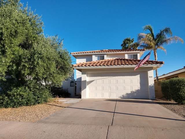 5359 E Elmwood Street, Mesa, AZ 85205 (MLS #6080774) :: Keller Williams Realty Phoenix