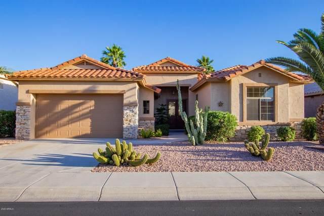 17919 W Udall Drive, Surprise, AZ 85374 (MLS #6080776) :: Klaus Team Real Estate Solutions