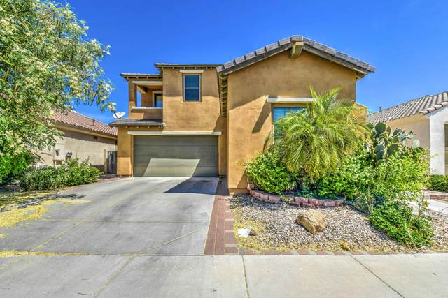 312 W Rosemary Drive, Chandler, AZ 85248 (MLS #6080789) :: Klaus Team Real Estate Solutions